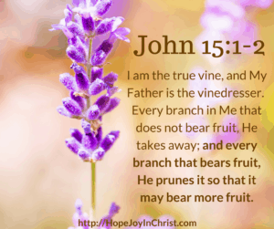 John 15:1-2 God the great gardener loves us too much to leave us where we are.