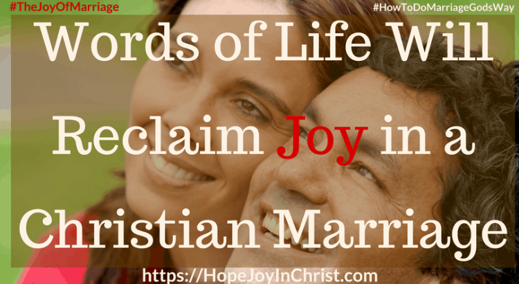 Words of Life Will Reclaim Joy in a Christian Marriage ft 31 Ways to Reclaim Joy in a Christian Marriage #SpeakWordsOfLife #Wordsoflifequotes #JoyInMarriage #MarriageGodsWay #JoyQuotes #JoyScriptures #ChooseJoy #ChristianMarriage #ChristianMarriagequotes #ChristianMarriageadvice #RelationshipQuotes