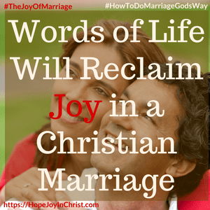 Words of Life Will Reclaim Joy in a Christian Marriage sq 31 Ways to Reclaim Joy in a Christian Marriage #SpeakWordsOfLife #Wordsoflifequotes #JoyInMarriage #MarriageGodsWay #JoyQuotes #JoyScriptures #ChooseJoy #ChristianMarriage #ChristianMarriagequotes #ChristianMarriageadvice #RelationshipQuotes